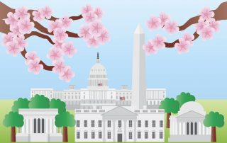 DC Income Taxes